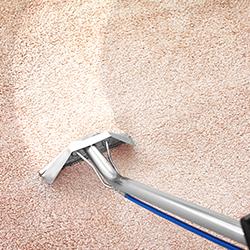 Techniques de nettoyage de la moquette