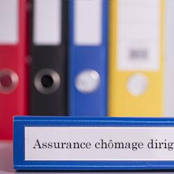 assurance chômage dirigeant définition