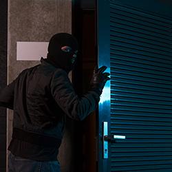 assurance pro vol et vandalisme