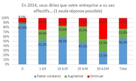 Effectifs dans les TPE et PME en 2014
